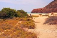 ensenada grande and beachcombers