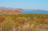 Sea of Cortez , Loreto area
