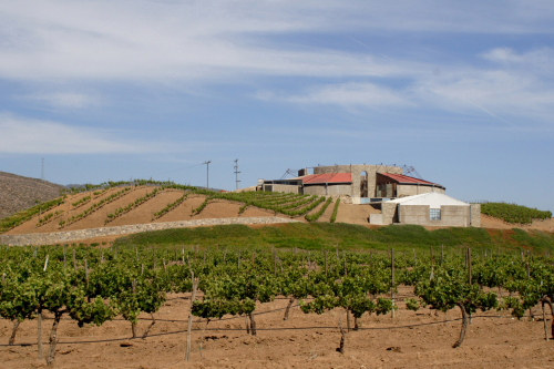 santo thomas winery