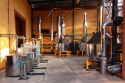 casa herradura distillery
