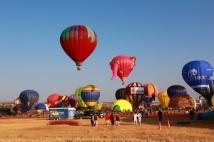 hot air elephant balloon