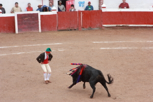 Portuguese style of bullfighting