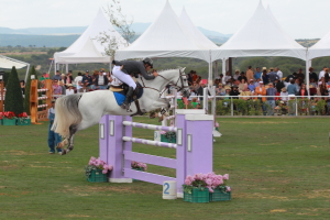 Grand opening of Show Jumping