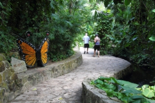 a monarch butterfly sculpture along the trail through this pavilion
