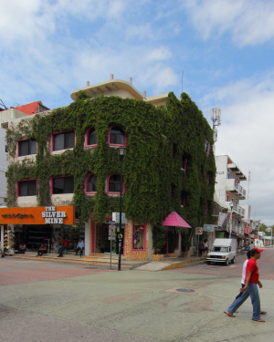 This vine covered hotel is one of the first on La Quinta and is also one of the most affordable