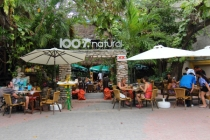 a popular open air restaurant with natural organic foods