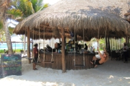 there are several beach clubs in town and here's a look at Ziggy's swing bar