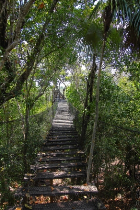 This bridge crosses a valley which floods in the raining season and leads to an observation tower with a birds eye view