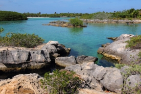 a sheltered lagoon with calm, clear water and lots of tropical fish