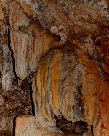 figura del Mamut
