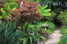 A Garden Pathway