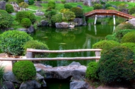 small ponds are also common elements of japanese gardens