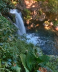 Another one the cascading waterfalls and flora in Uruapan park