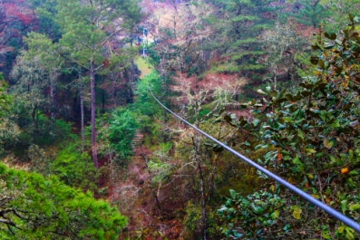 Here's an example of a zip line adventure