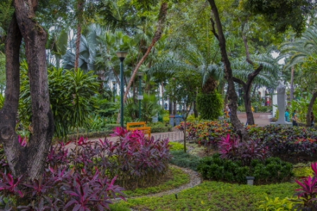 Malecon Gardens
