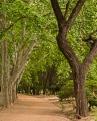 Hiking and Biking trails In Parque San Martin