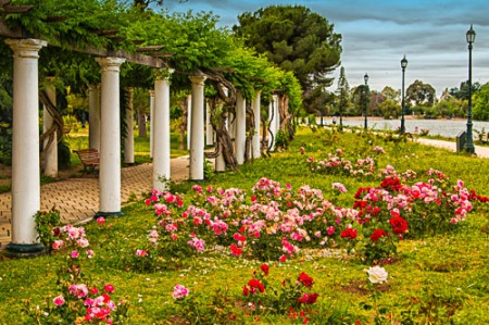 Rose Garden Promenade