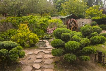 japanese garden in the metropolitan park