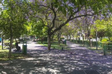 Bustamonte Park