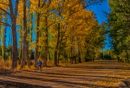 During the fall season, Uspallata is a good place for mountain biking and scenic landscapes.