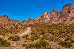 As the road leaves the oasis of Uspallata it enters a desert environment much like this until it reaches the hill of 7 colores.