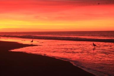 sunrises on Playa Brava can be inspirational