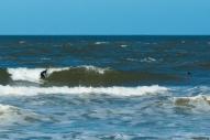 surfing off Playa Brava